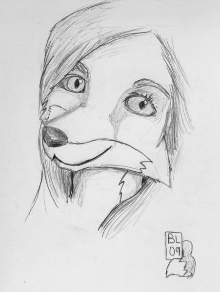 Can You See The Resemblance 2: A sketch of an actress (from a headshot), but as a fox.  Can you see the resemblance?